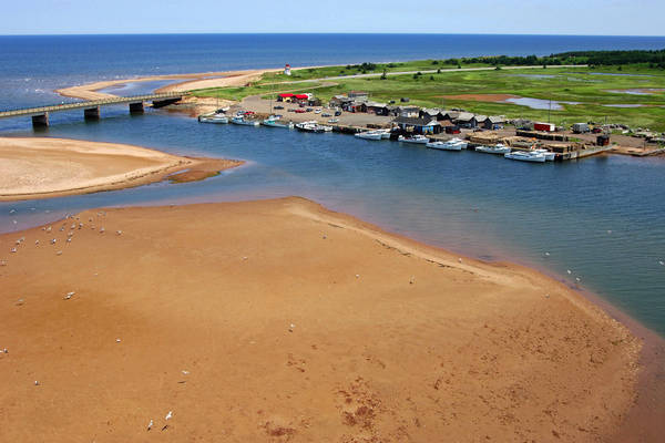 Covehead Harbour