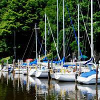 Woodland Harbor Marina