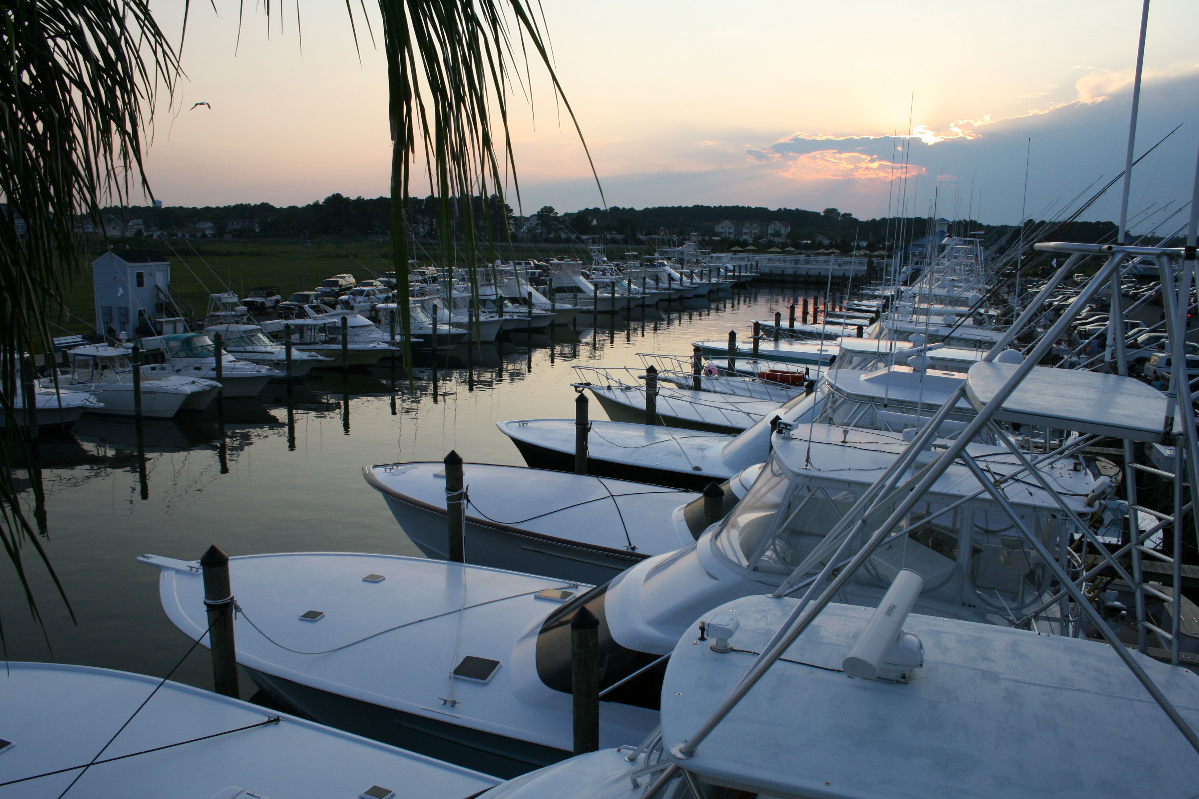 Ocean city fishing center in ocean city md united states for Ocean city nj fishing charters