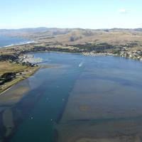 Bodega Harbor