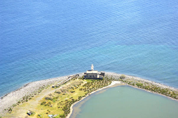 Punta Lingua Light