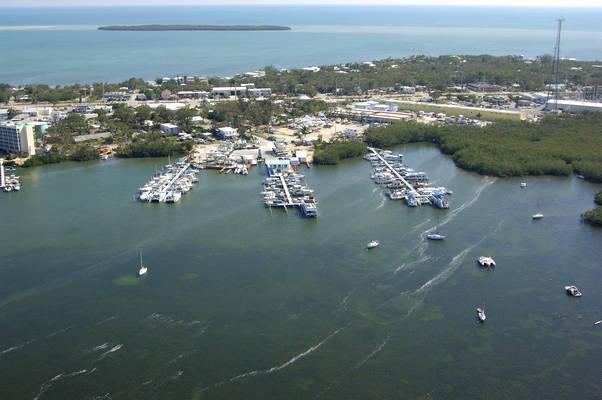 Mangrove Marina