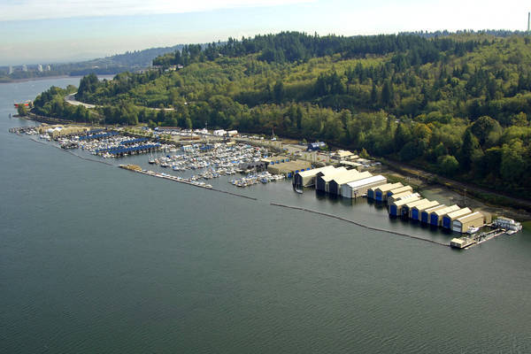 Reed Point Marina
