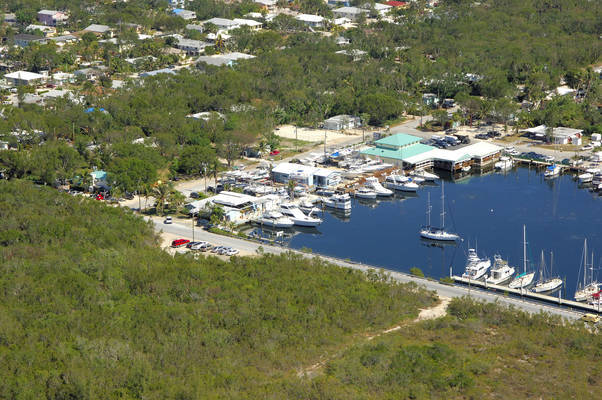 Ocean Bay Marina