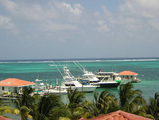 Belize Yacht Club Marina