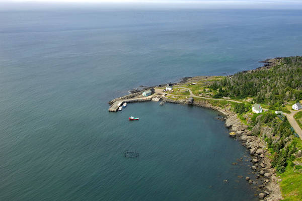 Whale Cove Harbour, Whale Cove Campground