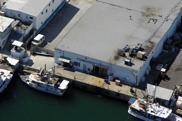 Fishbusterz Fisheries Inc