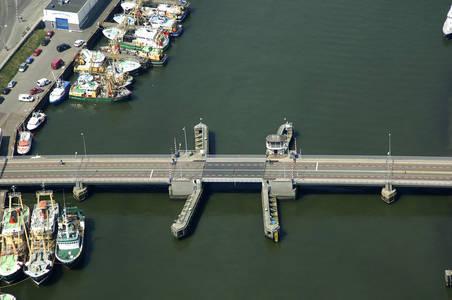 Pine Untroubled The New Profound Bridge