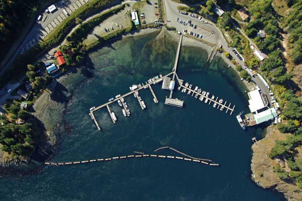 Browns Bay Marina