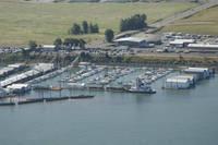 McCuddy's Marina