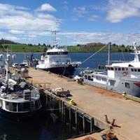 Ocean Gear Marina