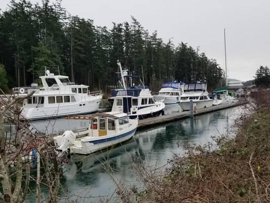 Brandt's Landing Marina