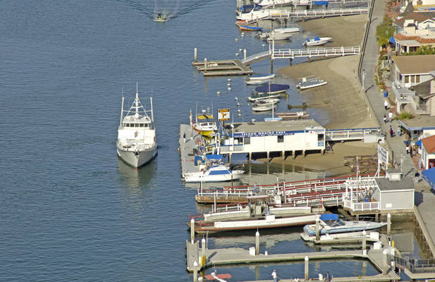 Island Marine Fuel