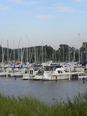Washington Park Marina