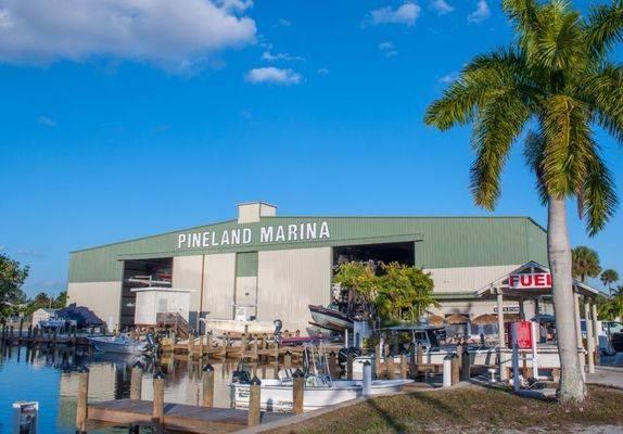 Safe Harbor Pineland