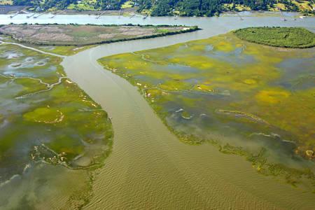 Graham Creek Inlet