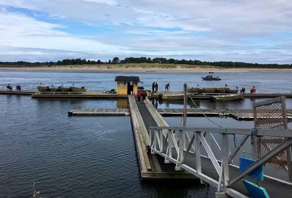 Jetty Fishery Marina