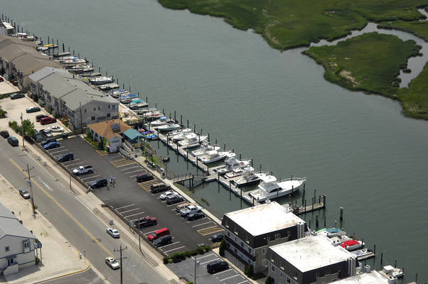 Avalon Sport Fishing Center / Moran's Dockside