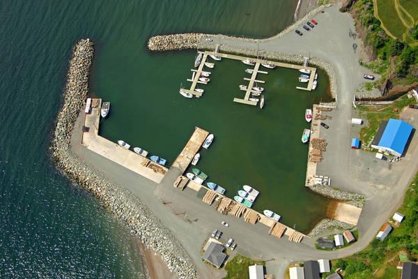 Ballantyne's Cove Marina