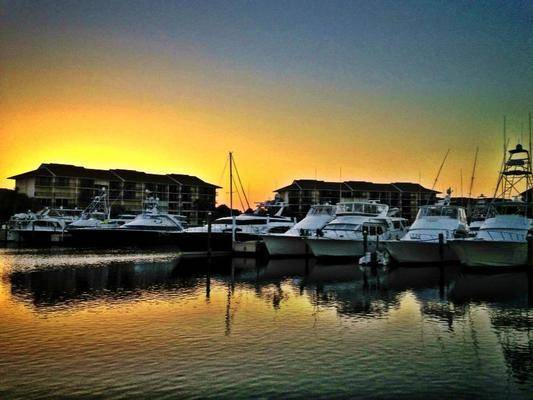The Bluffs Marina