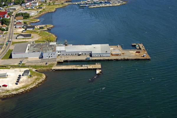 Pursuit Fisheries Wharf