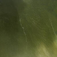 River Blackwater Inlet