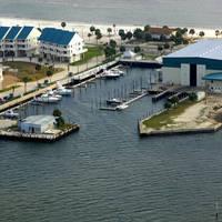 Alligator Point Marina