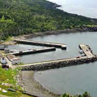 Trout Cove Harbour