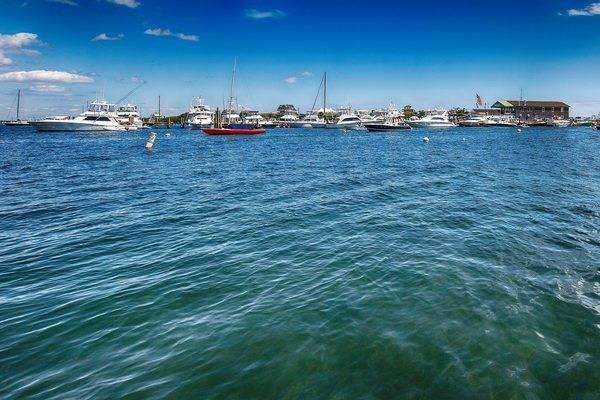 Payne's Dock and Mahogany Shoals