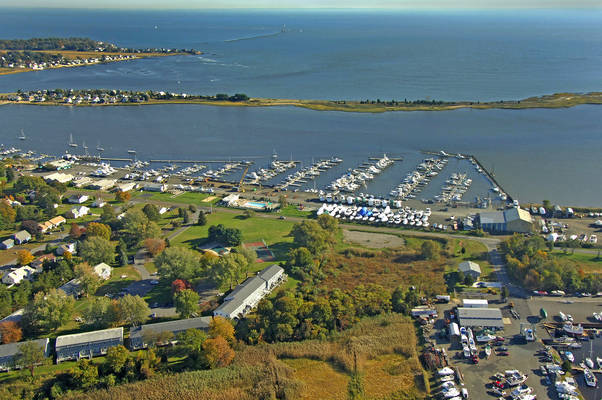 Cedar Island Marina