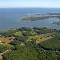 Gwynn's Island & Milford Haven