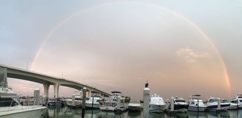 Clearwater Harbor Marina
