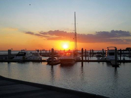Oasis Marinas at Westshore Yacht Club