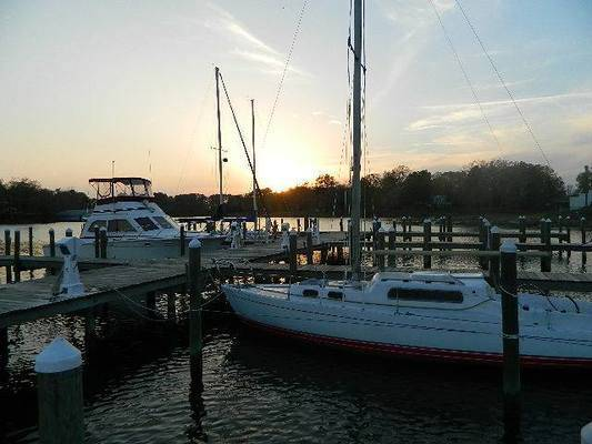 Carter's Cove Marina