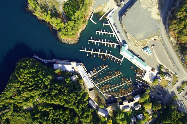 Telegraph Cove Marina & RV Park