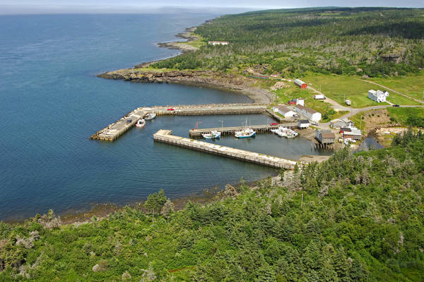 Trout Cove Harbour