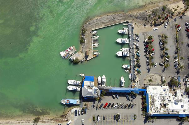 Whale Harbor Marina