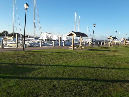 Morehead City Transient Docks