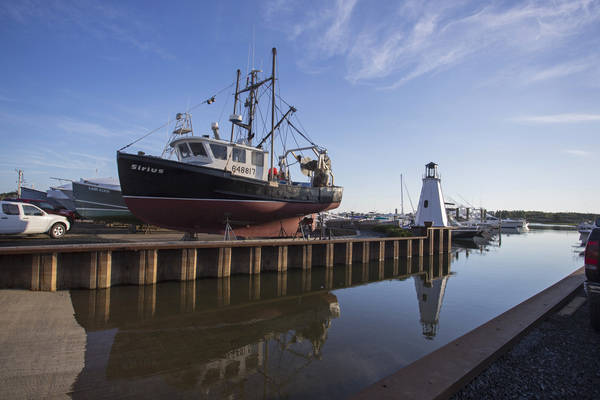Safe Harbor | Green Harbor Marina