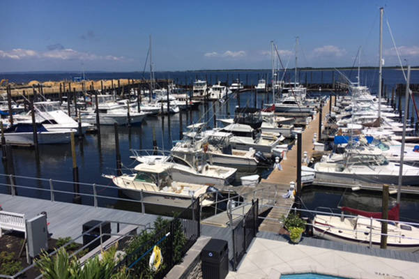 Sandy Hook Bay Marina