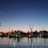 TJ's Marina & Boatyard